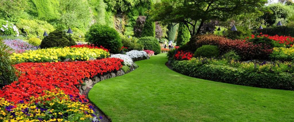 Gartengestaltung von Erdmann Gartenbau
